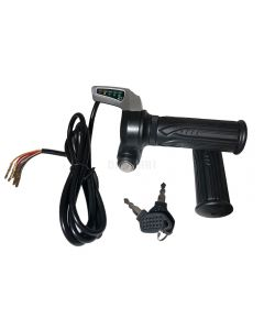 Throttle with Key Switch and 5 LED Battery Level Indicator (24V)