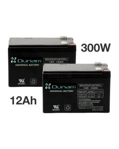 300W battery set