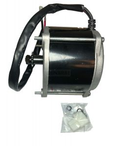 EcoSmart Motor (500W)