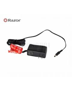 Genuine Razor Charger for Drift Rider / Power A2 / Electric Skateboard